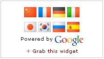 google-translate-mini-flags-2row-4x4
