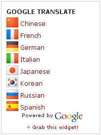 google-translate-mini-flags-vertical